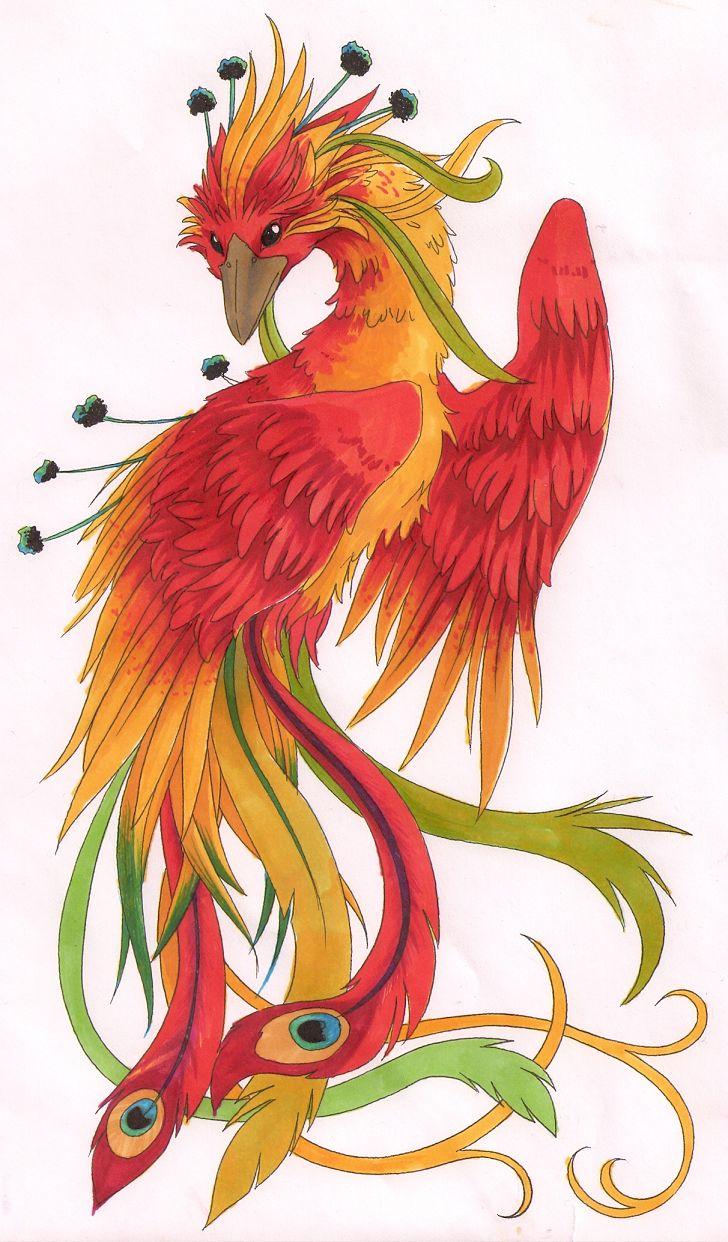 Face Phoenix My Use