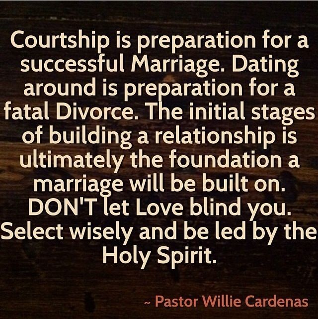Courtship With Find Love Maltese