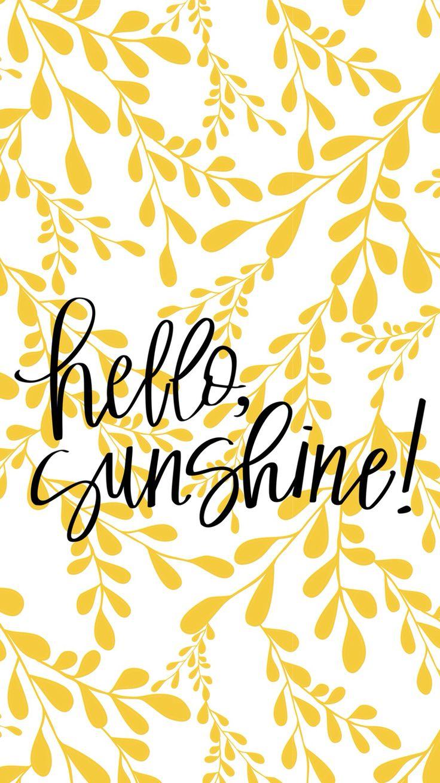 Sunshine Hi Sunshine Texas