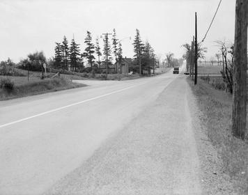Drama Woodbine 7 404 Canadian Markham Hwy Escort