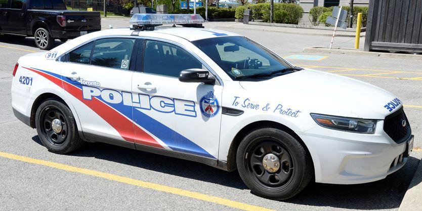 Escort Parkdale Torontowest In Car